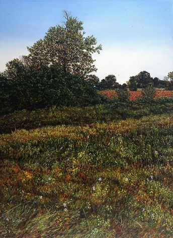 Illinois Landscape #124, 1993