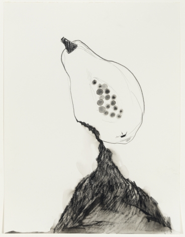 Valerie Piraino Southern Fruit (Black and Ripe), 2014 Graphite on paper