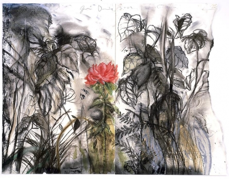 A Peony from Auckland, 2003