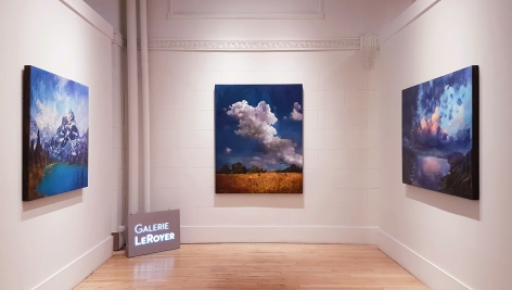 Stev'nn Hall   Galerie LeRoyer