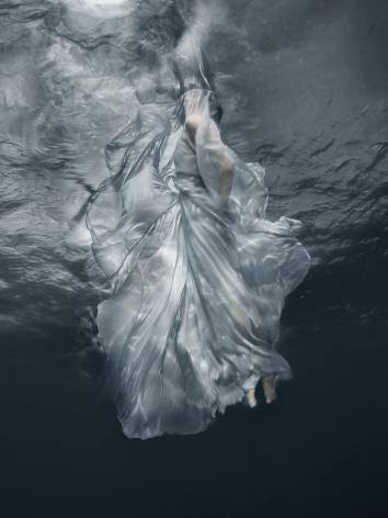 Barbara Cole, Galerie LeRoyer