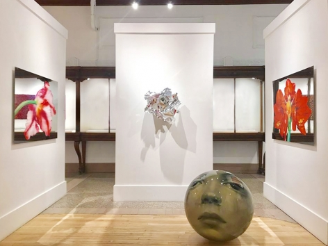 Martin C. Herbst | FOCUS | août 2018 | Galerie LeRoyer