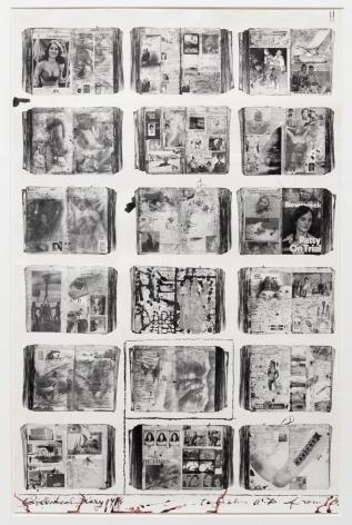Peter Beard Bicentennial Diaries (B), 1995