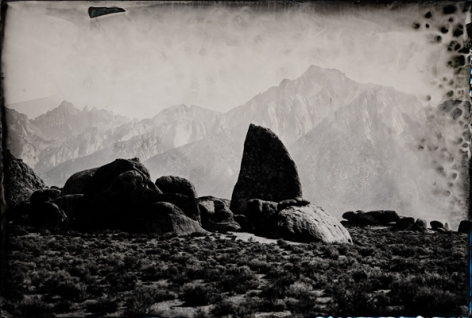 Lone Pine, Unique Collodion Wet Plate: SOLD