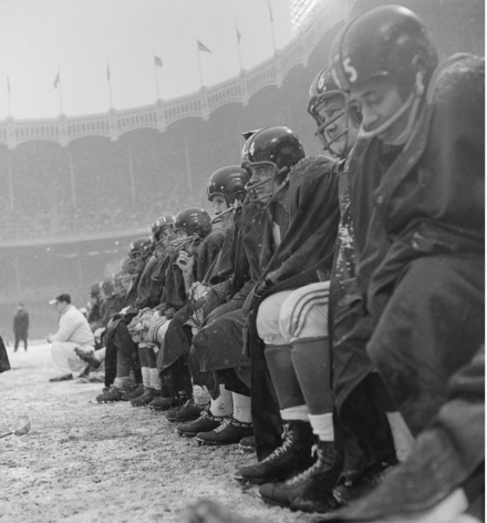 New York Giants Bench, NY Giants vs Cleveland Browns, Yankee Stadium, 1958, Silver Gelatin Photograph