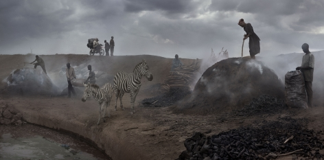 CHARCOAL BURNING WITH ZEBRAS, 2018,