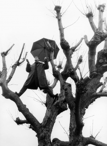 Untitled (Man with Umbrella in Tree Vertical), Paris, 1992, Archival Pigment Print