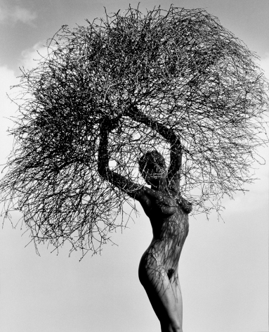 Neith with Tumbleweed, Paradise Cove, 1986, 20 x 16 Inches, Toned Silver Gelatin Photograph, Edition of 3