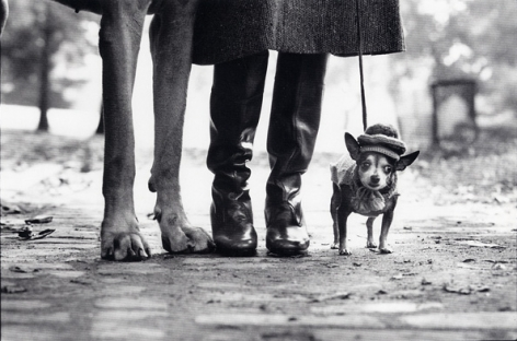 New York City (Dog Legs), 1974, 16 x 20 Silver Gelatin Photograph