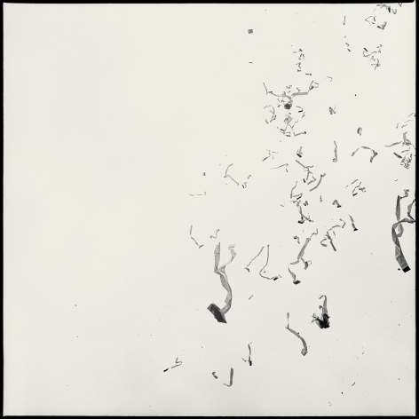 Ticker Tape Parade, 1989 (Plate 36), Combined Edition of 15 Photographs: