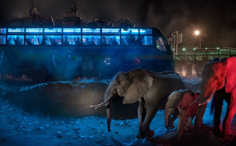 BUS STATION WITH ELEPHANTS RETREATING, 2018,