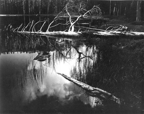 Ansel Adams Siesta Lake, Yosemite National Park, California, 1958