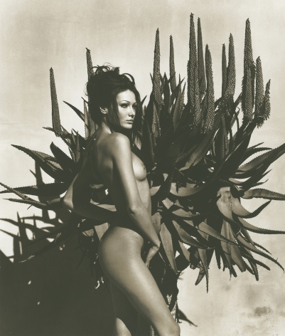 Carla Bruni 6, Point Dume, 1992, 14 x 11 Inches, Silver Gelatin Photograph, Edition of 4