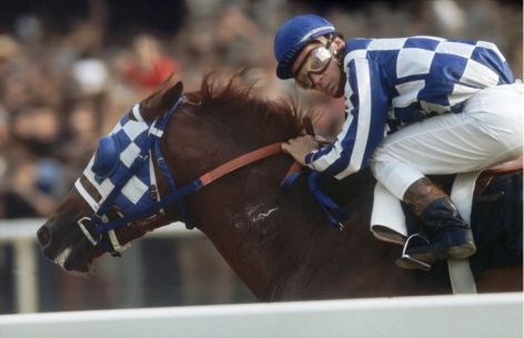 Secretariat, Ron Turcotte winning Belmont Stakes, NY, 1973, Archival Pigment Print