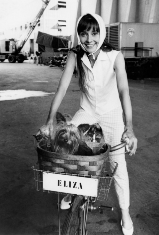 """Bob Willoughby Audrey Hepburn riding her bicycle on the set of """"My Fair Lady"""" with her dog Assam, 1963"""