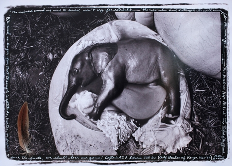 "Elephant Embryo, Uganda, ""The ruined wood...,"" 1966"