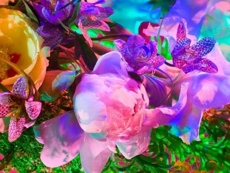 Electric Blossom #1721, 2012