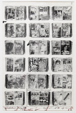 Bicentennial Diaries (B), 1996, 34 1/4 x 22 1/2 Inches, Silver Gelatin Photograph with Ink