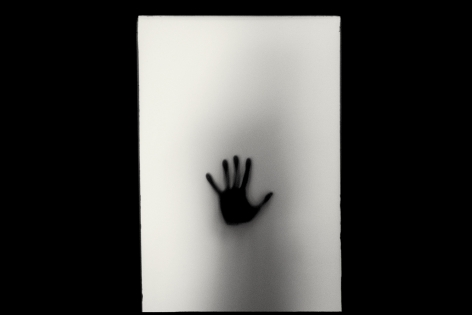 Hand, 2015 (Plate 58), Combined Edition of 15 Photographs: