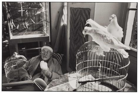 Henri Cartier-Bresson Henri Matisse (With Doves), Vence, France, 1944