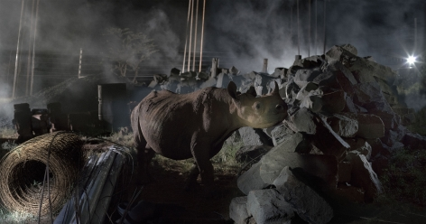 CONSTRUCTION SITE WITH RHINO, 2018,