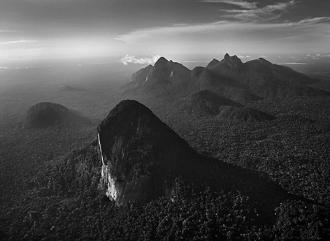 Amazon Forest, State of Amazonas, Brazil 2009, 16 x 20 inches, Silver Gelatin Photograph