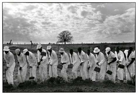 Copyright Danny Lyon / Magnum Photos, The Line, Gerguson Prison Farm, from Conversations with the Dead, 1968