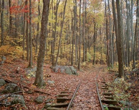 Stephen Johnson Railroad Tracks and Trees, Blue Ridge Parkway, 1994