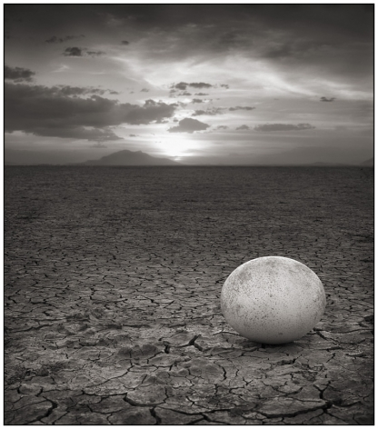 Abandoned Ostrich Egg, Amboseli, 2007, 23 1/4 x 20 3/8 Inches, Archival Pigment Print, Edition of25