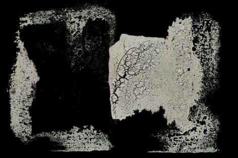 Remission, 2019, Archival Pigment Print