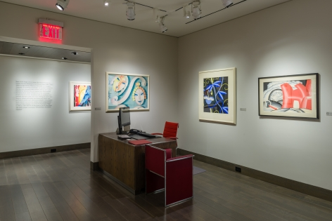 installation view ofWinold Reiss will not be classified.at Hirschl & Adler Galleries, April 12 - May 25, 2018