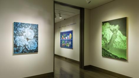 installation view ofAndy MisterOn a Classic Nitrogen Afternoonat Hirschl & Adler Modern, March 14 - April 20, 2019