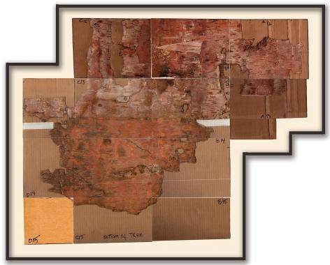 flattened birch bark in an irregularly shaped frame by artist Maria Elena Gonzalez