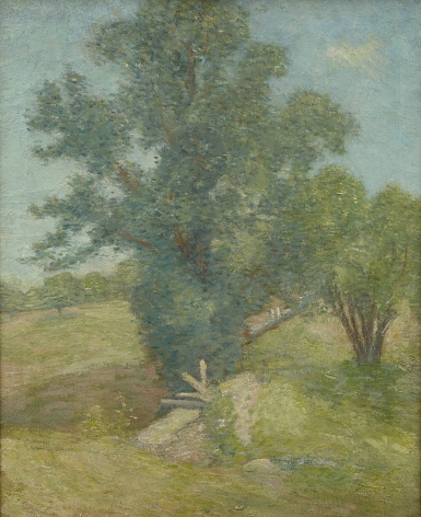 Julian Alden Weir (1852-1919), Tree and Meadow, Connecticut, 1900