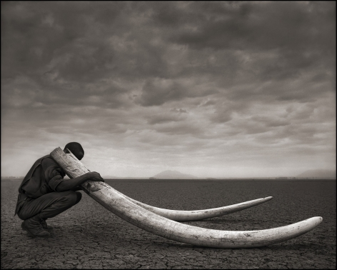 nick brandt, ranger with tusks of killed elephant amboseli