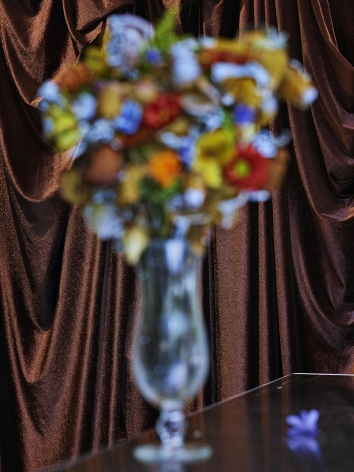 Abelardo Morell Flowers for Lisa #70 - After Dougals Sirk