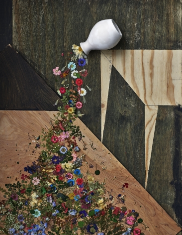 Abelardo Morell, Flowers for Lisa #30, 2016