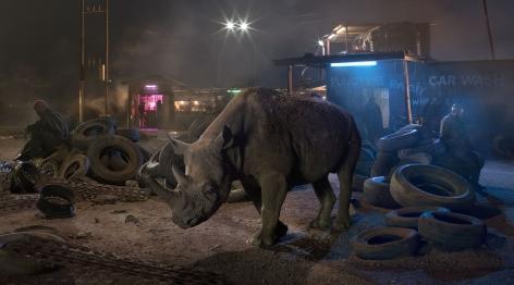 nick brandt, garage with blind rhino
