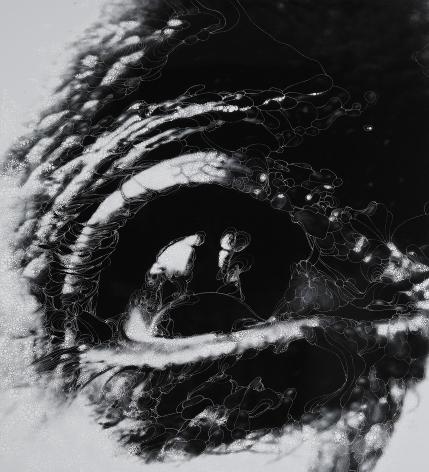 sebastiaan bremer eye #05