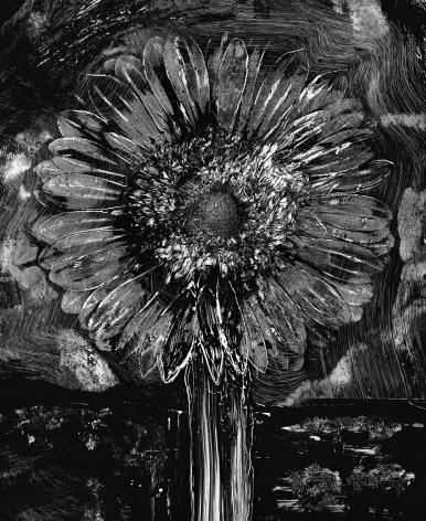 abelardo morell, Flowers for Lisa #35 - Cliché-Verre