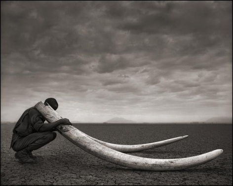 nick brandt ranger with tusks of killed elephant amboseli