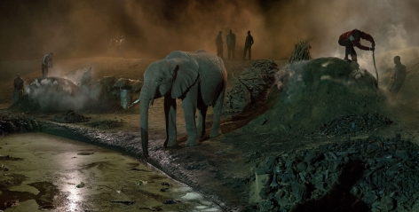 nick brandt charcoal burning with elephant