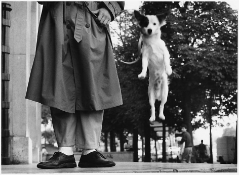 elliott erwitt paris france