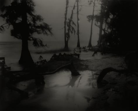 Deep South, Untitled (Bones II), 1998