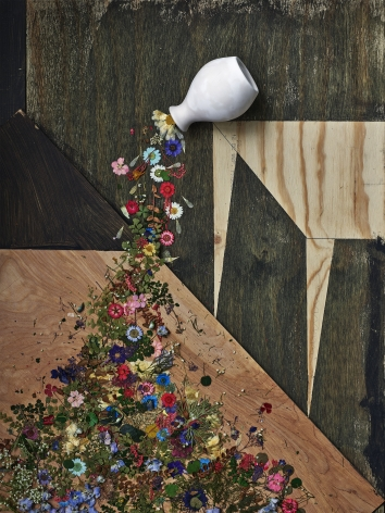abelardo morell flowers for lisa 30