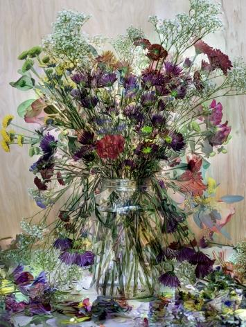 abelardo morell, flowers for lisa #2