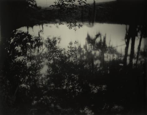 Deep South, Untitled (Avery Island II), 1998