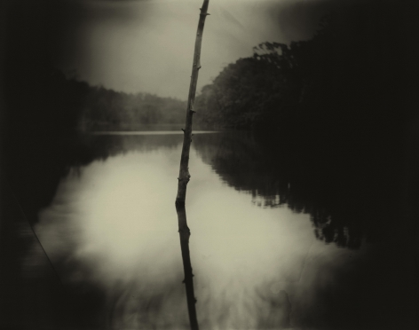 Sally Mann, Deep South, Untitled (Stick), 1998
