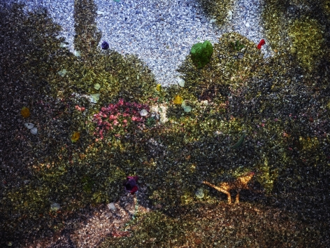Abelardo Morell, Tent-Camera Image on Ground: View of Monet's Gardens with Wheelbarrow, Giverny, France, 2015