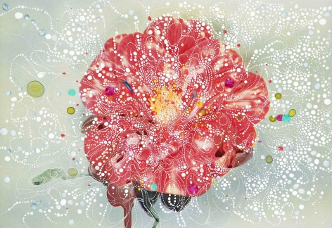 Sebastiaan Bremer, Camellia Effendee Angustifolia, 2018